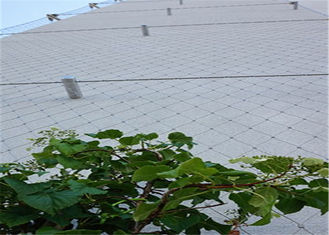 Rust Protection Stainless Steel Cable Trellis , Stainless Steel Wire Mesh Netting