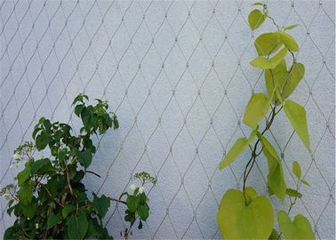304 / 316 Stainless Steel Cable Trellis , Stainless Steel Green Wall Mesh
