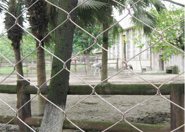 China Wear Resisting Stainless Steel Wire Rope Mesh For Protecting Zoo Animals supplier