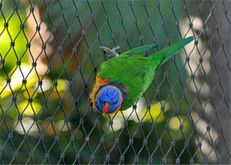 Durable Parrot Aviary Mesh Stainless Steel High Strength Long Service Life